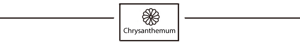 Chrysanthemum_Header_02