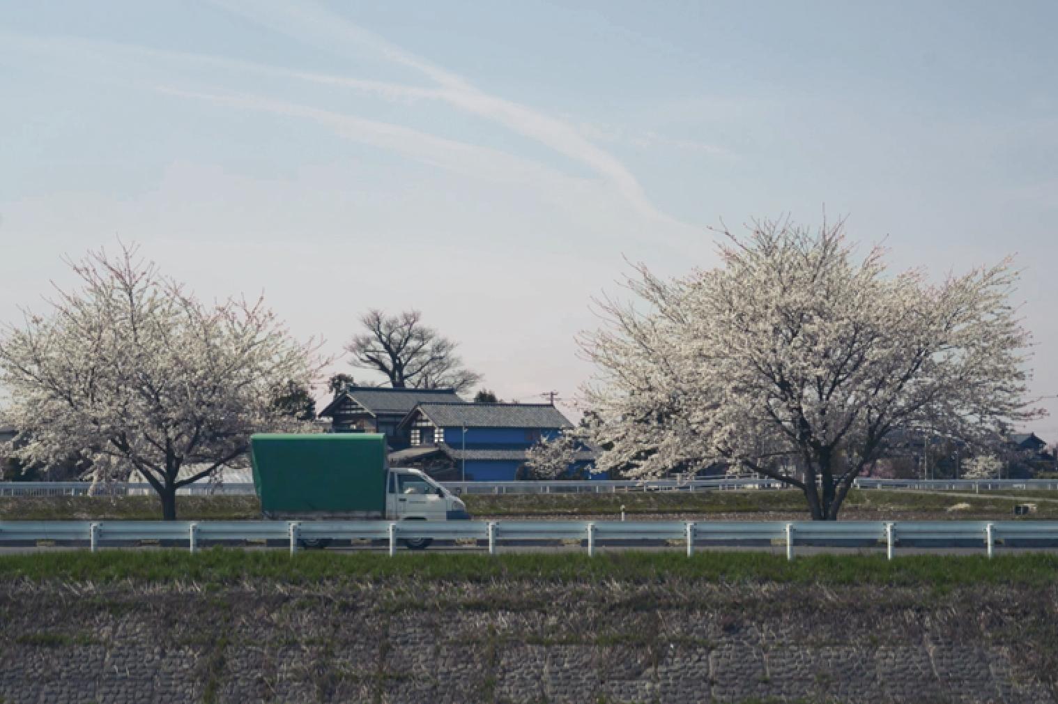 Spotlight on Mitsuhiro Konishi
